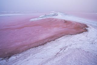 When the Great Salt Lake turns Pink