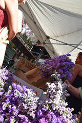 DSC_6394 (photographer695) Tags: columbia road sunday flower market london