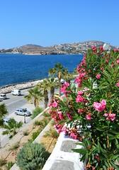 DSC_0111 (JustineChrl) Tags: parikia paros island sunset village landscape beautiful summer holidays greece nikon sky blue white pink flowers house beach
