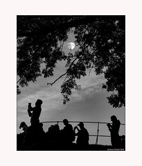 The Moon's a Balloon (zolaczakl) Tags: balloonfiesta bristolballoonfiesta2018 bristol bristolinmonochrome balloon silhouette trees fence mono monochrome blackandwhitebristol blackandwhite 2018 august uk england photographybyjeremyfennell nikond800 nikonafsnikkor50mmf18glens cliftondown