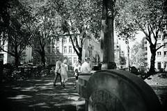 Bokeh@Kö, Düsseldorf 2018 Summer 6 (Amselchen) Tags: city streetphotography streettrees bnw blackandwhite lightandshadow light shadow bokeh season summer blur dof depthoffield sony a7rii sonyilce7rm2 sigma sigmamc11 30mmf14dchsm|art