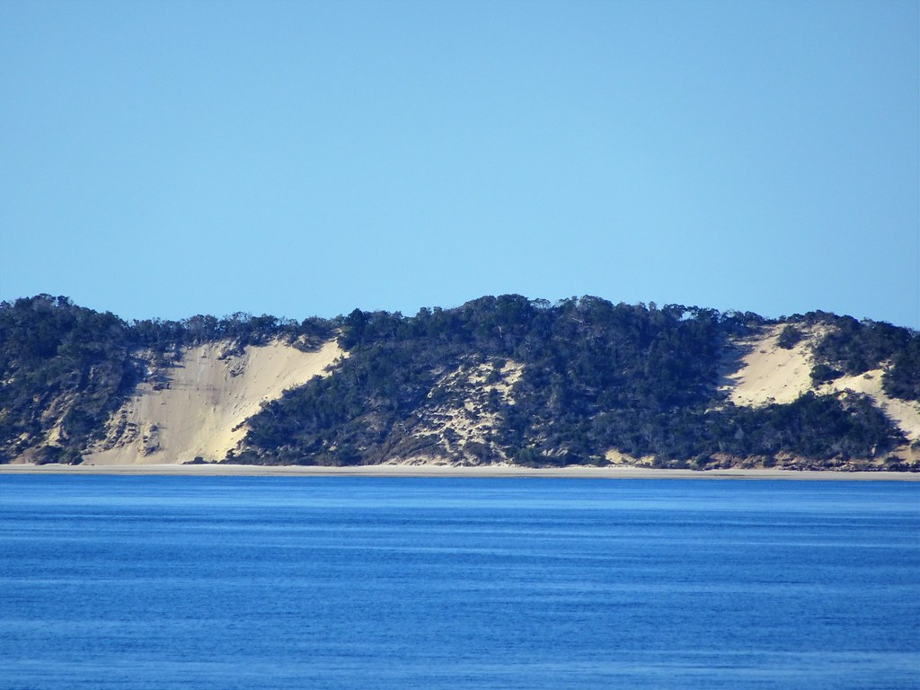 Fraser Island.  From the Spirit of Hervey Bay Whale Watching cruise.