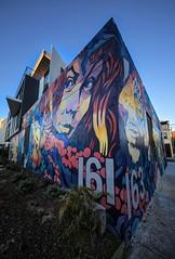 #6168 Liberty st, Enmore (Rmonty119) Tags: canon eos5dlll lightroom skylum street enmore colour girl graffiti