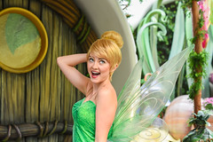 Tinkerbell (EverythingDisney) Tags: pixiehollow disney disneyland fairy disneysfairies pixie tinkerbell tinker talent