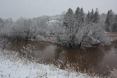 Henrys Pond- North Granville, PEI (Craigford) Tags: northgranville granville pei canada snow snowy trees pond henryspond water