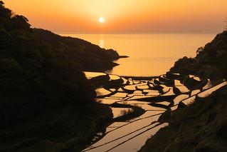 浜野浦の棚田_1/ Hamano-ura terraced rice fields