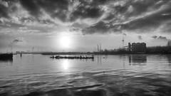 P1030506fx24 (hans hoeben) Tags: adm lx2 lx dmc panasoniclx2 white black mist foggy morningview northseacanal dutch holland amsterdam harbour with sun fog reprocessed bw
