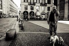 Corso di Porta Romana 3 (-dow-) Tags: fujifilmwclx70 milano cani dogs phone telefono fujifilm x70 corsoportaromana
