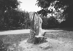 op - stump carving (johnnytakespictures) Tags: olympus pen ee3 ferrania filmferrania p30alpha p30 blackandwhite bw panchromatic film 35mm analogue leamingtonspa leamington warwickshire jephson jephsongardens garden gardens park stump tree wood carving carved seat chair nature natural