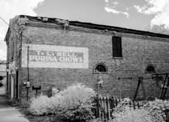 Purina Chows IR (Neal3K) Tags: georgia buckheadga bricks infraredcamera kolarivisionmodifiedcamera 590nmir bw blackwhite abandoned