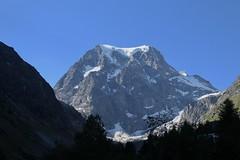 Mont Collon 3637 mètres (bulbocode909) Tags: valais suisse arolla valdhérens montcollon montagnes nature neige arbres vert bleu paysages