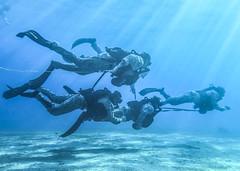 Just Keep Swimming (United States Marine Corps Official Page) Tags: 26thmarineexpeditionaryunit 26thmeu c5f deployment marines usmc ussiwojimalhd7 maritimeraidforce mrf dive reconnaissance sof jordan navcent centcom taskforce51 5thmarineexpeditionarybrigade marcent jo