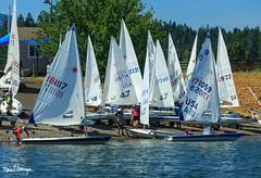 2018 Laser Pacific Coast Championship-8337 (SailingPDX) Tags: 2018 august bridgeofthegods columbiagorgeracingassociation columbiariver laser oregon sunday racing sail sailboat