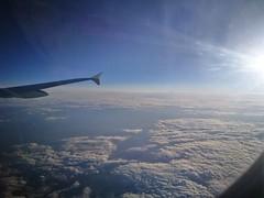 Teppich (T.Flat ッ) Tags: lh deutschelufthansa lh031 flug flugzeug airbus a321 fra ham eddf überdenwolken sonne sunshine upintheair flight aviation kurztripp tagestripp hinundzurück heimflug hh frankfurt frankfurtmain