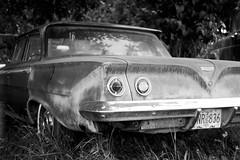 1961 Chevrolet Bel Air (bac1967) Tags: leica leicarangefinder leicaiiif panatomicx blackandwhitefilm blackandwhite black white bw beerenol beerol beer beerfilmdeveloper caffenol pacificnorthwest pnw kodakfilm kodak kodakpanatomicx film 135 35mmfilm chevrolet chevy belair chevroletbelair 1961chevrolet 1961chevroletbelair oregon cottagegroveor biscayne