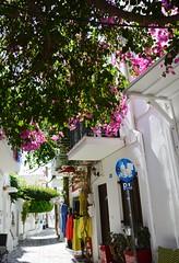 DSC_0047 (JustineChrl) Tags: parikia paros island sunset village landscape beautiful summer holidays greece nikon sky blue white pink flowers house beach