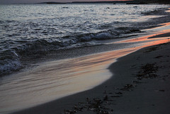 DSC_8302 (SaYuMi-87) Tags: natura nature naturalistica verde mare isola green sea island menorca minorca baleari baleares spain spagna travel viaggio vacanze holydays summer estate 2018 july luglio august agosto sonbou spiaggia spiagge beach blu acqua blue water arenasdesonbou alajor tramonto crepuscolo marealtramonto twilight sunset seaatthesunset