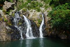 DSC_1898 (sch0705) Tags: hk hiking shuilochostream lantau stream