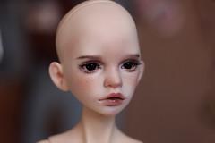 FS: DIM Annabeth head on Spiritdoll MSD boy body - $400 + shipping (Guinevere88) Tags: bjd bjdfaceup balljointeddoll bjdforsale dimdoll dimhappy dimdollannabeth