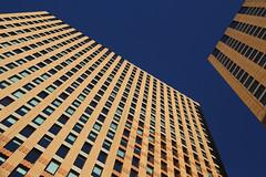 Symphony (Bert#) Tags: netherlands amsterdam symphony building zuidas architecture blue sky composition pattern