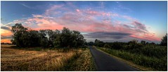 Pinks (andystones64) Tags: sunset sunlit sunlight weather weatherwatch sky clouds cloudscape nature naturephotography wideview countryside lane road scunthorpe lincolnshire northlincs northlincolnshire nlincs trees verge foilage