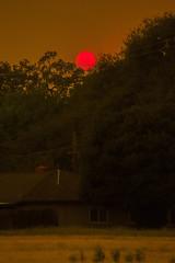 carr fire sunset (Jillian Kern) Tags: fire sunset wildfire carr california northern sky smoke weather redding