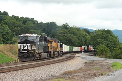 Colorful (TolgaEastCoast) Tags: ns norfolk southern union pacific shawsville virginia 217 intermodal up es44ac ac44c6m mane locomotive tofc cofc christiansburg district