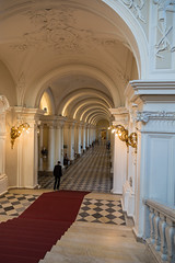 St Petersburg97062018 (TwoStep2002) Tags: hermitage russia stpetersburg sanktpeterburg saintpetersburg ru