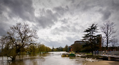 Trees (brianac37) Tags: 2018 april landscape riveravon spring stratforduponavon warwickshire trees river flood