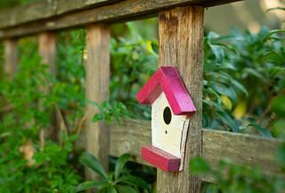 Set Design for 'Birds on a Fence'?