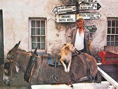 Irlande, un charmant équipage rétro (Roger-11-Narbonne) Tags: irlande mer annimal ville