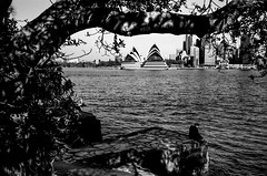 Sydney (Bill Thoo) Tags: sydney australia nsw newsouthwales sydneyoperahouse sydneyharbour operahouse harbour kirribilli monochrome bnw blackandwhite film analog analogue filmphotography analogphotography analoguephotography blackandwhitefilm blackandwhitefilmphotography 35mm 35mmfilm 35mmfilmphotography filmcamera landscape urban city cityscape travel water leica m6 leicam6 voigtlander voigtlandercolorskopar voigtlandercolorskoparpii3525 3525 jch streetpan japancamerahunter jchstreetpan400 streetpan400 street jchstreetpan