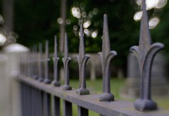 In a row (Historical67) Tags: fence fencefriday iron dof lensbaby sweet35 setauket cemetery bokeh graves