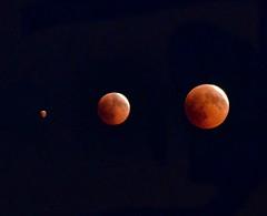 Tin tin tin raggi di luna....rossa 😉 (salernolorenza) Tags: eclissi di luna 2018 nikonflickraward lunarossa nikon d5100