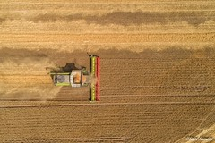Down on the farm, Harvest 18 (Steve Samosa Photography) Tags: sthelens england unitedkingdom gb claas combine harvest wheat crops aerial droneshot drone