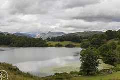 Loughrigg Tarn (JoshJackson84) Tags: canon60d sigma18250mm europe uk england cumbria lakes lakedistrict mountains fells hills loughrigg loughriggtarn langdales