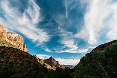 Zion 2018-094_ILCE-7RM3-16 mm-180529_180529-ILCE-7RM3-16 mm-180013__STA5305 (Staufhammer) Tags: sony sonya7riii a7riii sonyalpha sony1635mmf28gm sony1635mm sonygm sony85mmf18 zion nationalparks nationalpark zionnationalpark grandcanyon landscape alphashooters travel valley fire state park valleyoffire valleyoffirestatepark