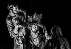 Semana Santa Zaragoza 2018 - Miércoles Santo - Jesús Camino del Calvario (vivas12) Tags: nikon d3100 zaragoza semanasanta procesión cofrade tradición miércolessanto mirada gente people fotografiacofrade españa spain saragossa religión cofradía capirote hollyweek cofradíadejesúscaminodelcalvario blancoynegro blackwhite monocromo monochrome blackamdwhite byn bn bw semanasanta2018