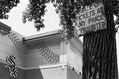 Prohibited (Crawford Brian) Tags: sign whitesox chicagowhitesox vintagesign building tree sky chicago illinois mlb majorleaguebaseball stadium comiskeypark uscellularfield guaranteedratefield bw blackandwhite monochrome nikonfm film analog fpp400 thedarkroomcom orwon74plus