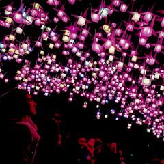 1000 Cranes in Pink (missgeok) Tags: vividsydney2018 vivid sydney australia 1000cranes lightinstallation artinstallation festival papercranes spectators topfavourite crowds lighting lights 1000 colours nightshot night senbazuru origami cranes therocks circularquay pink red