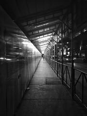 night walk (rick miller foto) Tags: latenight stories streetphotographer mono monotone blackandwhite sidewalk walkway covered canada ontario toronto walk night