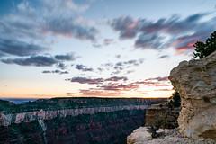 Zion 2018-049_ILCE-7RM3-19 mm-180528_180528-ILCE-7RM3-19 mm-193733__STA5166 (Staufhammer) Tags: sony sonya7riii a7riii sonyalpha sony1635mmf28gm sony1635mm sonygm sony85mmf18 zion nationalparks nationalpark zionnationalpark grandcanyon landscape alphashooters travel valley fire state park valleyoffire valleyoffirestatepark