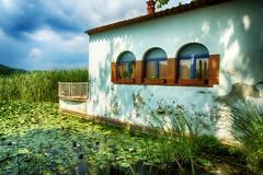 Entre nenúfares (candi...) Tags: llacdebanyoles casa arquitectura nenúfares agua lago cielo nubes naturaleza nature sonya77 macetas ventanas