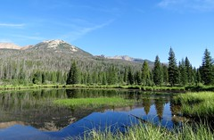 A Still Morning at Beaver Ponds (Patricia Henschen) Tags: colorado grandlake rockymountainnationalpark rocky mountains mountain nationalpark western slope trees trailridgeroad scenicbyway pond beaver ponds picnic area clouds forest kawuneechevalley reflection