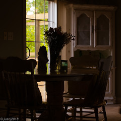 Kitchen Table Ver2 (JuanJ) Tags: kitchen table flowers kentucky georgetown scott county silhouette 2018 july house chair nikon d850 lightroom art bokeh nature lens light landscape white green red black pink sky people portrait location architecture building city iphone iphoneography square squareformat instagramapp shot awesome supershot beauty cute new flickr amazing photo photograph fav favorite favs picture me explore interestingness wedding party family travel friend friends vacation beach