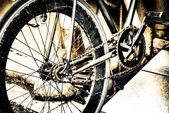 An old bicycle (sKame-rameha) Tags: bicycle street old rust youth abandon
