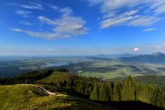 Das blaue Land (Pixelkids) Tags: dasblaueland bayern pferde berge hörnle voralpenland landschaft himmel blick staffelsee
