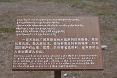 Sign near Lake Namtso, Tibet (Prof. Mortel) Tags: tibet lake namtso