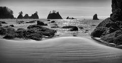 Southward dazzle (D. Inscho) Tags: olympiccoast pointofthearches washington washingtoncoast pacificnorthwest seastack silhouette beach coast