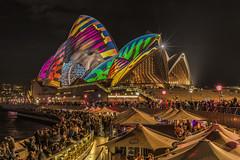 The Sting Ray (merbert2012) Tags: vividsydney sydneyoperahouse worldheritagesites australia sydneyharbour nautilus shells lightshow longexposure cityscape city nikond800 nikon fun travel night